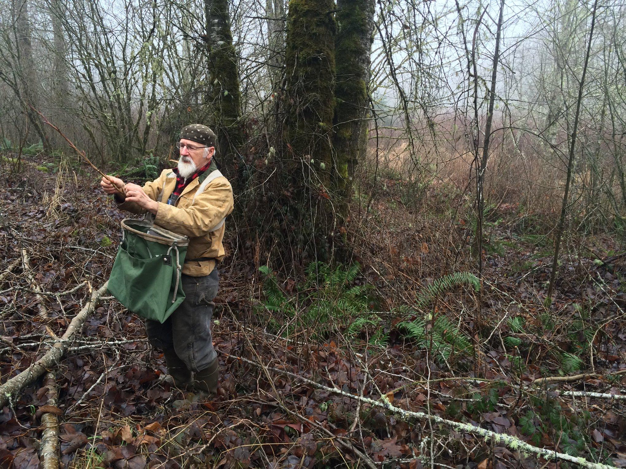 Skeeter wildcrafting